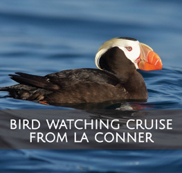 Bird Watching Cruise