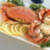 crabcruise-thumbnail