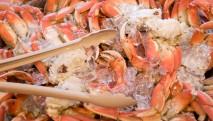 san-juan-cruises-chuckanut-bay-cracked-crab-cruise-dungeness-crab